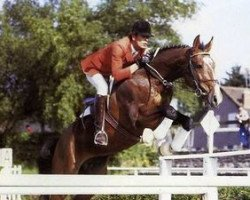 horse Papillon Rouge (Selle Français, 1981, from Jalisco B)