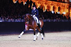 dressage horse Imperio 3 (Trakehner, 2003, from Connery)