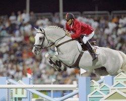 jumper Clinton (Holsteiner, 1993, from Corrado I)