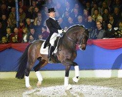 dressage horse Fidertanz (Rhinelander, 2002, from Fidermark I)