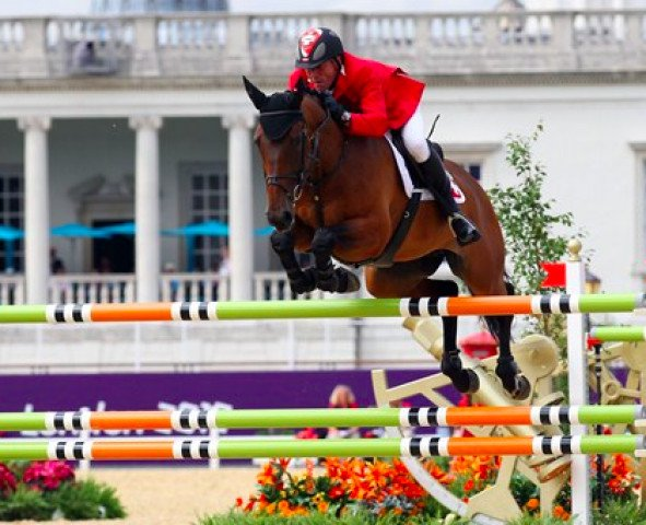jumper Castlefield Eclipse (Irish Sport Horse, 2002, from Obos Quality)