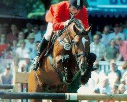jumper Lordanos (Holsteiner, 1993, from Landos)