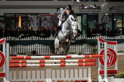 jumper Cordess 2 (Royal Warmblood Studbook of the Netherlands (KWPN), 2006, from Clinton)