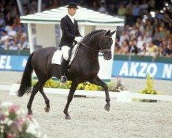 dressage horse Sandro Hit (Oldenburg, 1993, from Sandro Song)