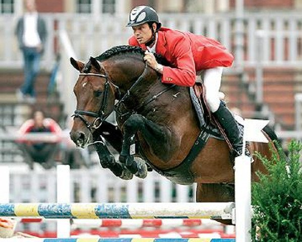 jumper Numero Uno (Royal Warmblood Studbook of the Netherlands (KWPN), 1995, from Libero H)