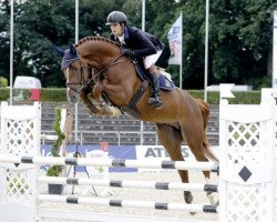 jumper Chacfly Ps (Hanoverian, 2012, from Chacco-Blue)