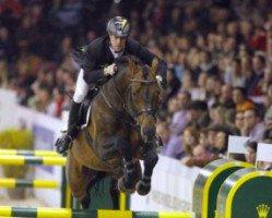 jumper Sandro Boy (Oldenburg, 1993, from Sandro)