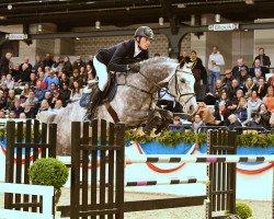 jumper Zuccero (Holsteiner, 2012, from Zirocco Blue VDL)