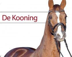 dressage horse De Kooning (Holsteiner, 2000, from Donnerhall)