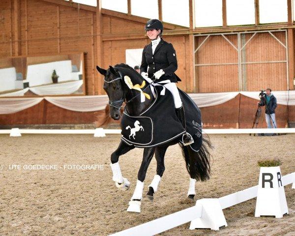 dressage horse Amarina (Oldenburg, 2013, from Dante Weltino OLD)