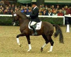 horse Fidermark I (Westphalian, 1992, from Florestan I)