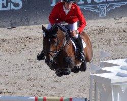 jumper Comme il faut 5 (Westphalian, 2005, from Cornet Obolensky)