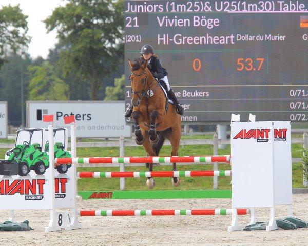 jumper Hl-Greenheart (Holsteiner, 2005, from Dollar Du Murier)