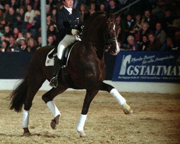 dressage horse Donnerhall (Oldenburg, 1981, from Donnerwetter)