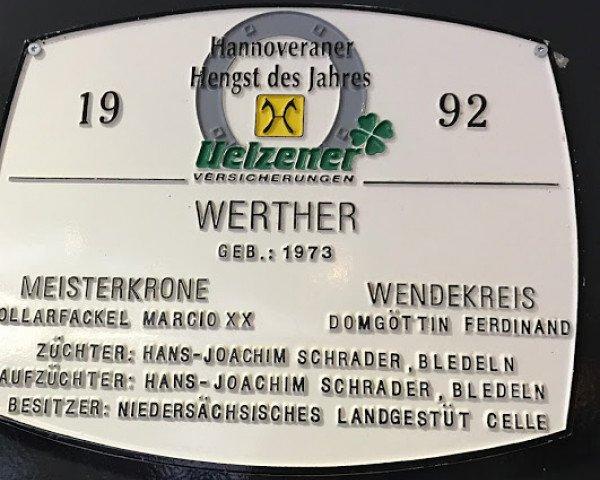 horse Werther (Hanoverian, 1973, from Wendekreis)