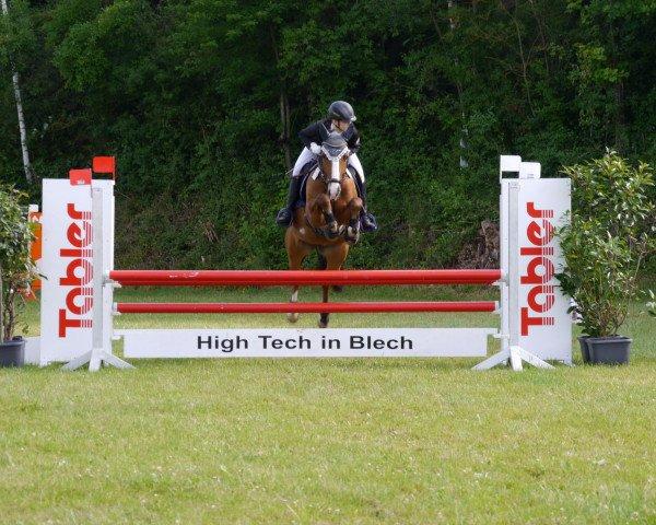 dressage horse Kleiner Donner 69 (unknown, 2010)