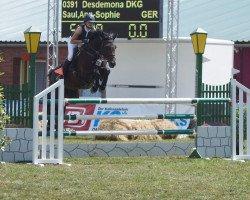 jumper Desdemona DKG (Holsteiner, 2011, from Landstreicher)