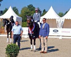 dressage horse Rock Springs (Westphalian, 2012, from Rock Forever NRW)