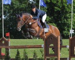 jumper Kiwi du Gibet (Luxembourg horse, 2001, from Kannan)