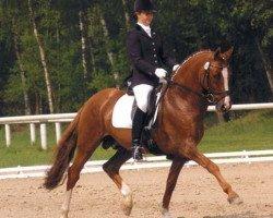 horse FS Don't Worry (German Riding Pony, 1995, from FS Dacapo Doro)