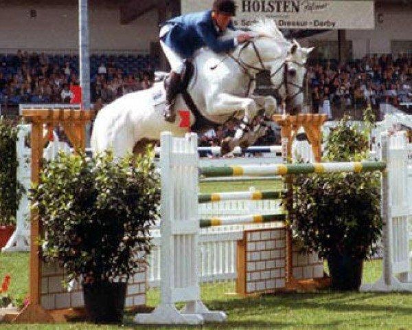 jumper Carthago (Holsteiner, 1987, from Capitol I)