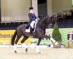 dressage horse Millennium (Trakehner, 2008, from Easy Game)