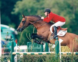 horse Calvaro Z (Holsteiner, 1987, from Caletto I)