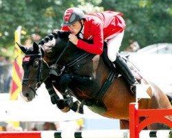 jumper Stakkato Gold (Hanoverian, 2001, from Stakkato)