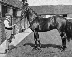 horse Royal Hampton xx (Thoroughbred, 1882, from Hampton xx)
