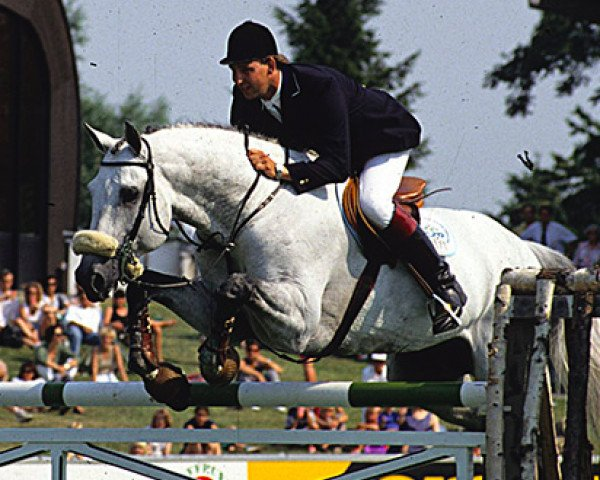 horse Corrado I (Holsteiner, 1985, from Cor de la Bryère)