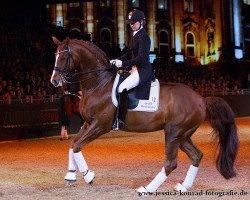 dressage horse Belissimo NRW (Rhinelander, 1999, from Beltain)
