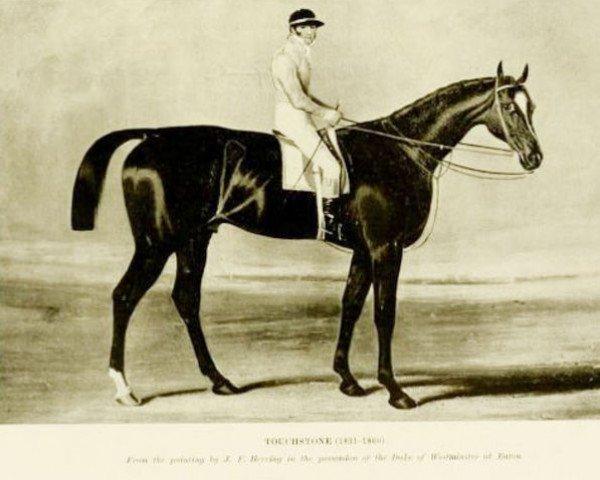 horse Touchstone xx (Thoroughbred, 1831, from Camel xx)