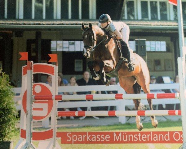 jumper Eskada 25 (Holsteiner, 2012, from Diarado)