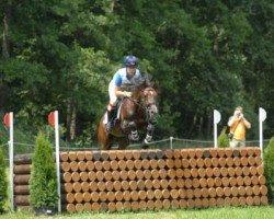 jumper Mr.Hale Bob (German Riding Pony, 1997, from Magnum)