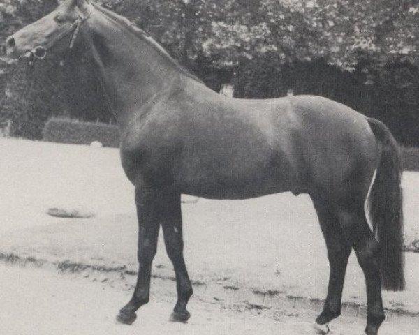 horse Gardist (Rhinelander, 1973, from Garamond)