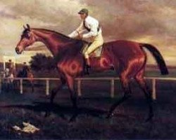 horse Robert the Devil xx (Thoroughbred, 1877, from Bertram xx)