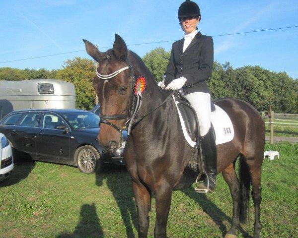 dressage horse Rani (Rhinelander, 2006, from Rocket Star)