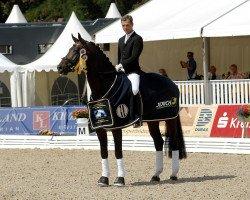 horse Fürst Romancier (Oldenburg, 2004, from Fürst Heinrich)