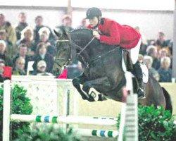 dressage horse Rockwell (Rhinelander, 1993, from Rocket Star)