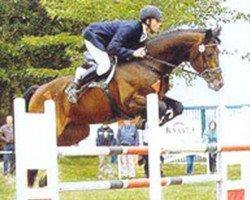 jumper Lafitte (Bavarian, 1992, from Landsberg)