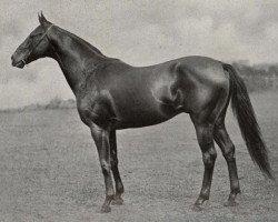 horse Graf Ferry xx (Thoroughbred, 1918, from Fervor xx)