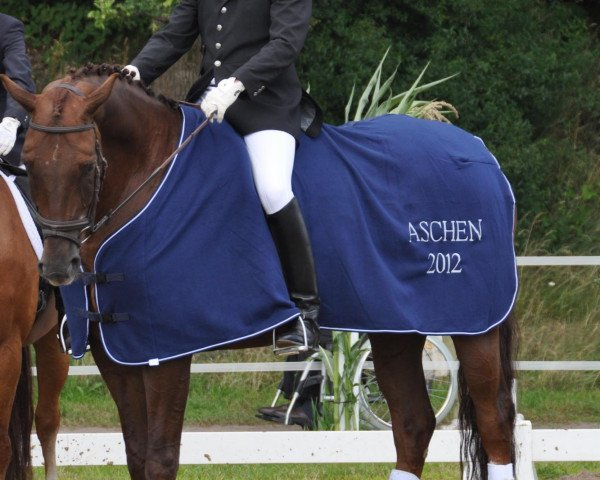 dressage horse Ronjon (Oldenburg, 2006, from Romanov)