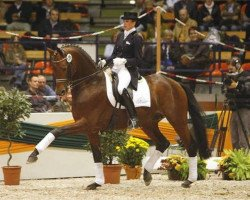 dressage horse Connery (Trakehner, 1998, from Buddenbrock)