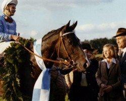 horse Königsstuhl xx (Thoroughbred, 1976, from Dschingis Khan xx)