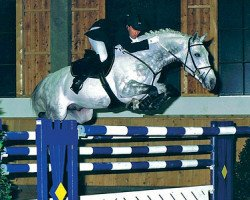 horse Camposanto (Holsteiner, 1994, from Carthago)