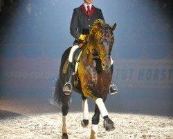 dressage horse Samba Hit I (Brandenburg, 1998, from Sandro Hit)