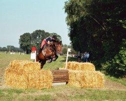 jumper Fantastic Florine (Westphalian, 2000, from Florestan I)