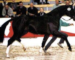 horse Friedenstraum (Westphalian, 1995, from Ferragamo)