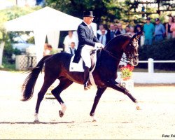 horse Biotop (Russian Trakehner, 1985, from Blesk)