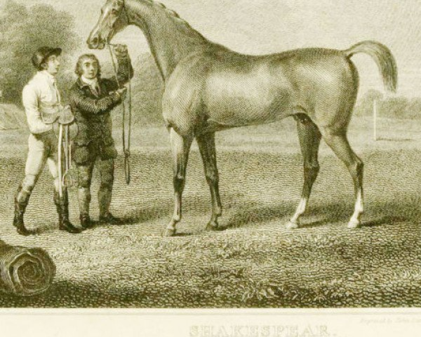 horse Shakespeare xx (Thoroughbred, 1745, from Hobgoblin xx)